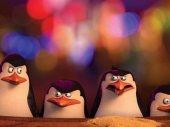 A Madagaszk�r pingvinjei