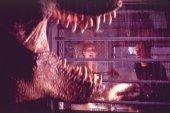 Az elveszett vil�g: Jurassic Park