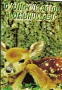 Gyöngyvirágtól lombhullásig DVD