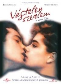 Végtelen szerelem DVD