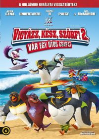 Vigyázz, kész, szörf 2. DVD
