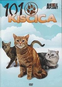 101 Kiscica - Cats 101 DVD