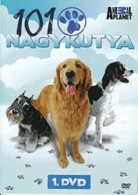 101 nagykutya DVD