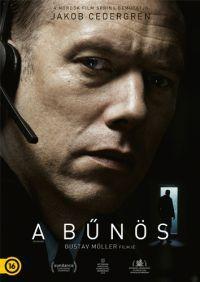 A bűnös DVD