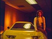 A hölgy és az autó