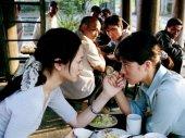 A kínai botanikus lányai