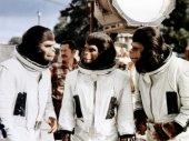 A majmok bolygója 3. - A menekülés