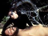 A pókasszony csókja