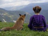 A róka és a gyerek