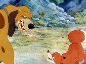 A róka és a kutya