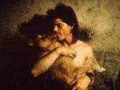 Állati szerelem