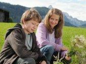 Alpesi klinika - A szerelem gyógyít