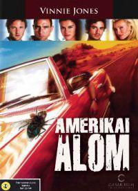 Amerikai álom - Az élet nem tündérmese DVD