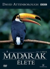David Attenborough - A Madarak Élete (4 DVD) DVD
