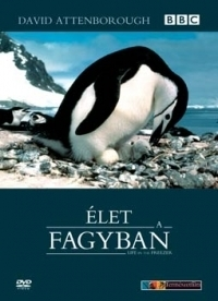 David Attenborough: Élet a fagyban (2 DVD) DVD