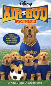 Ebadta focista DVD