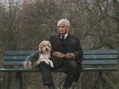 Egy ember és kutyája