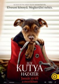 Egy kutya hazatér DVD