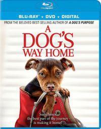 Egy kutya hazatér Blu-ray