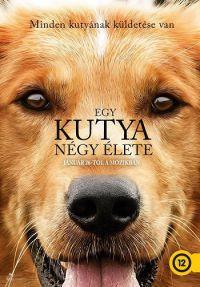 Egy kutya négy élete DVD