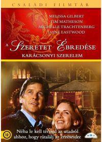 Elvarázsolt karácsony DVD