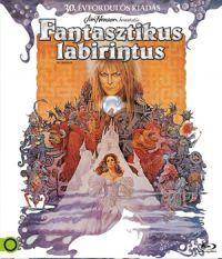 Fantasztikus labirintus Blu-ray