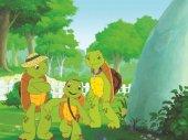 Franklin, a teknős