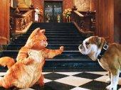 Garfield 2.