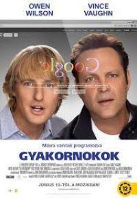 Gyakornokok DVD