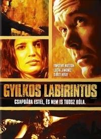 Gyilkos labirintus DVD