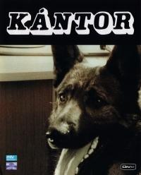 Kántor ( 1-2.) (2 DVD) DVD