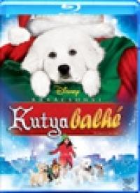 Karácsonyi kutyabalhé Blu-ray