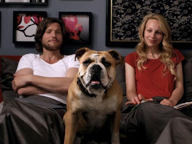 nő kutyával keres férfit szívvel egész film)