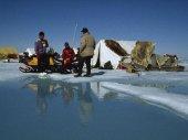 Ketten a jégen