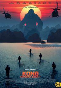 Kong: Koponya-sziget DVD