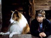 Lassie az igaz barát