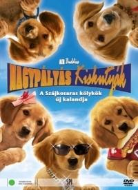 Nagypályás kiskutyák DVD
