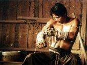 Ong Bak - A thai box harcosa