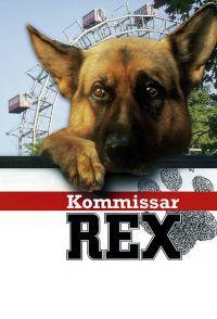 Rex felügyelő DVD