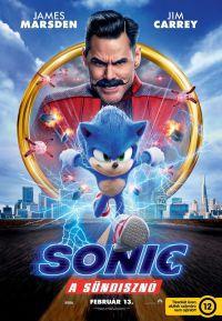 Sonic, a sündisznó DVD