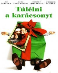 Túlélni a Karácsonyt DVD