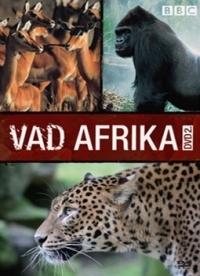 Vad Afrika 2. DVD