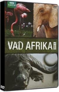 Vad afrika 3. DVD