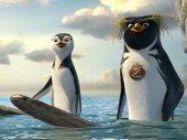 Vigyázz, kész, szörf